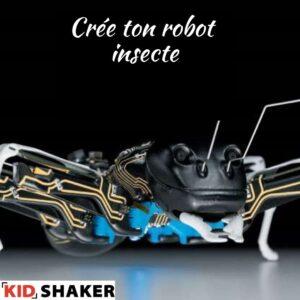 KIDSHAKER Robot instecte créativité art nature