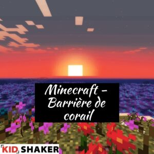 KIDSHAKER Barrière de corail Minecraft